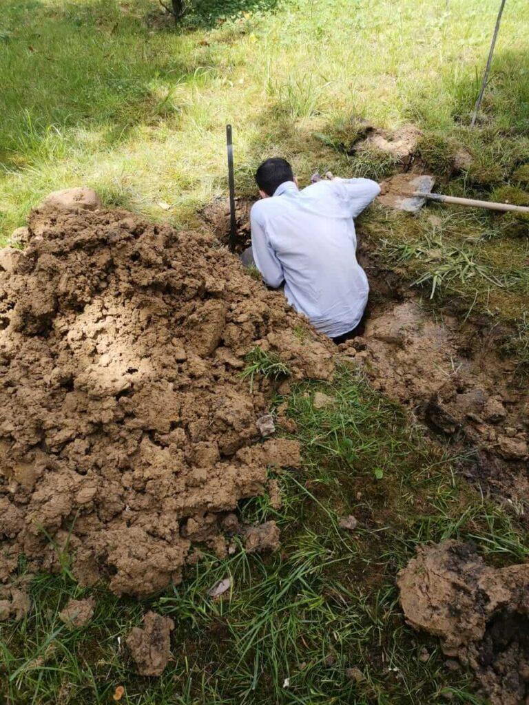 Отборы проб в почвенном разрезе (Керимзаде В.В.)