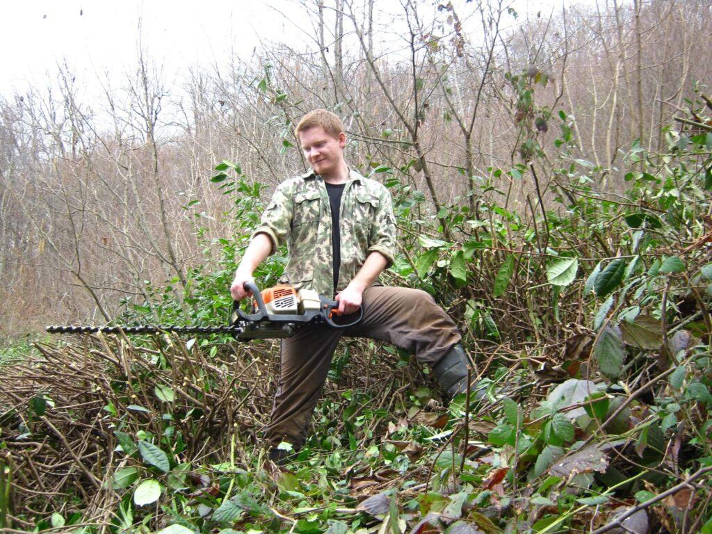 Расчистка участка заброшеннной плантации перед отбором почвы